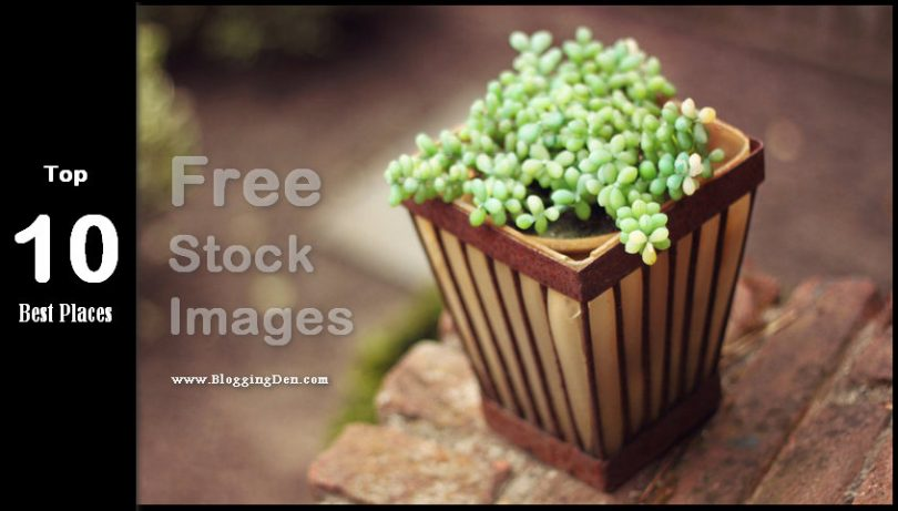 Top 10 best places for free stock images for bloggers