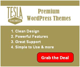 tesla themes black friday deal
